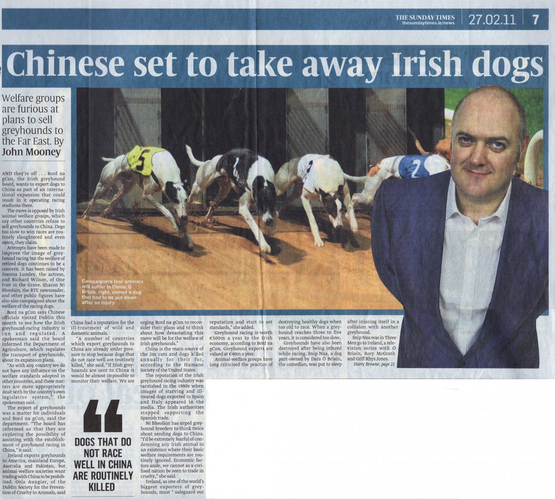 Irish sunday times