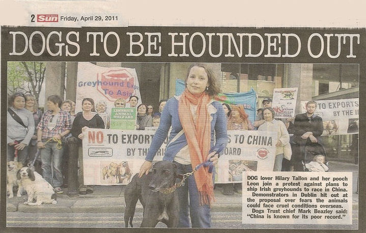 dogs to be hounded out