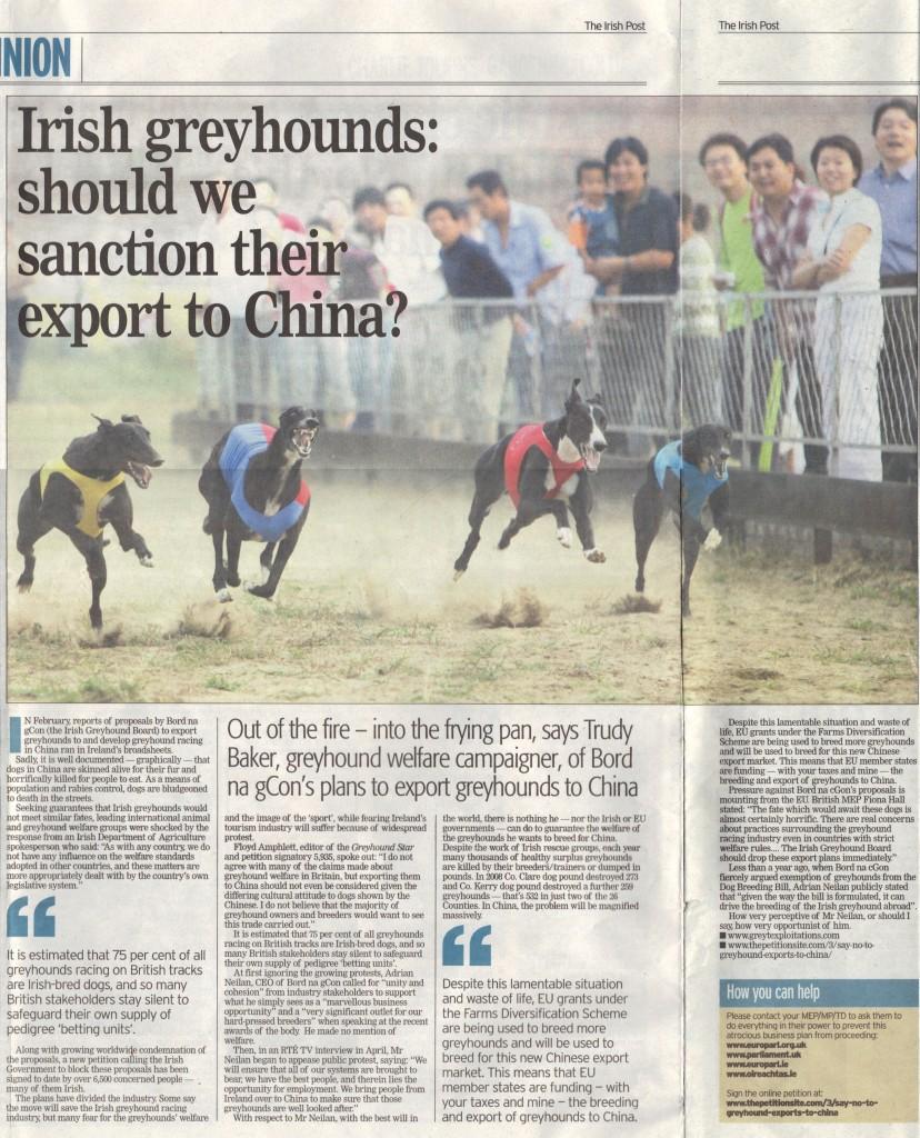 Irish Post opinion May 2011