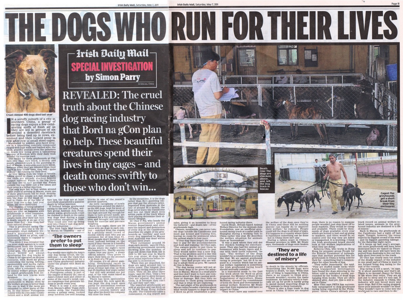 The Dogs who rund for their lives v3