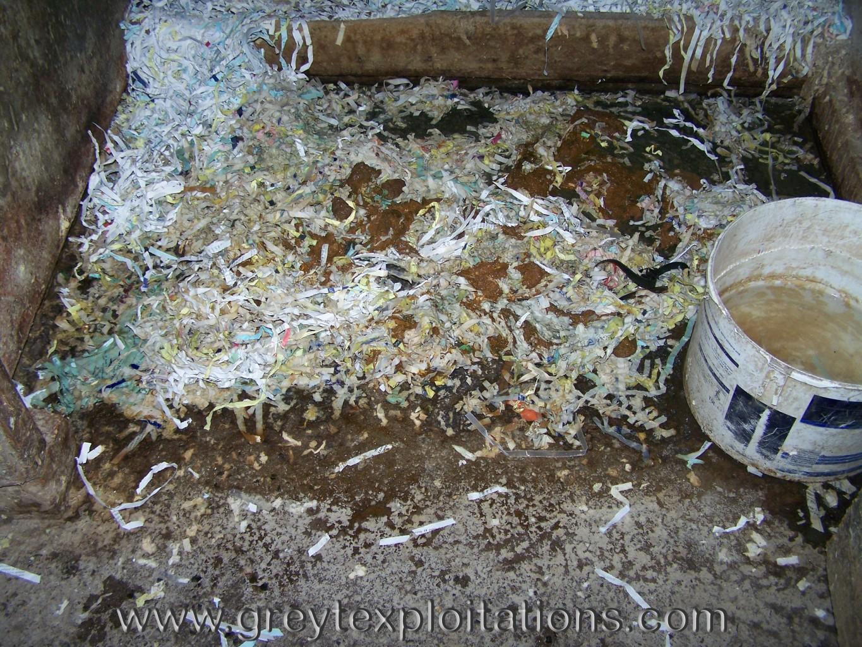 crap waste