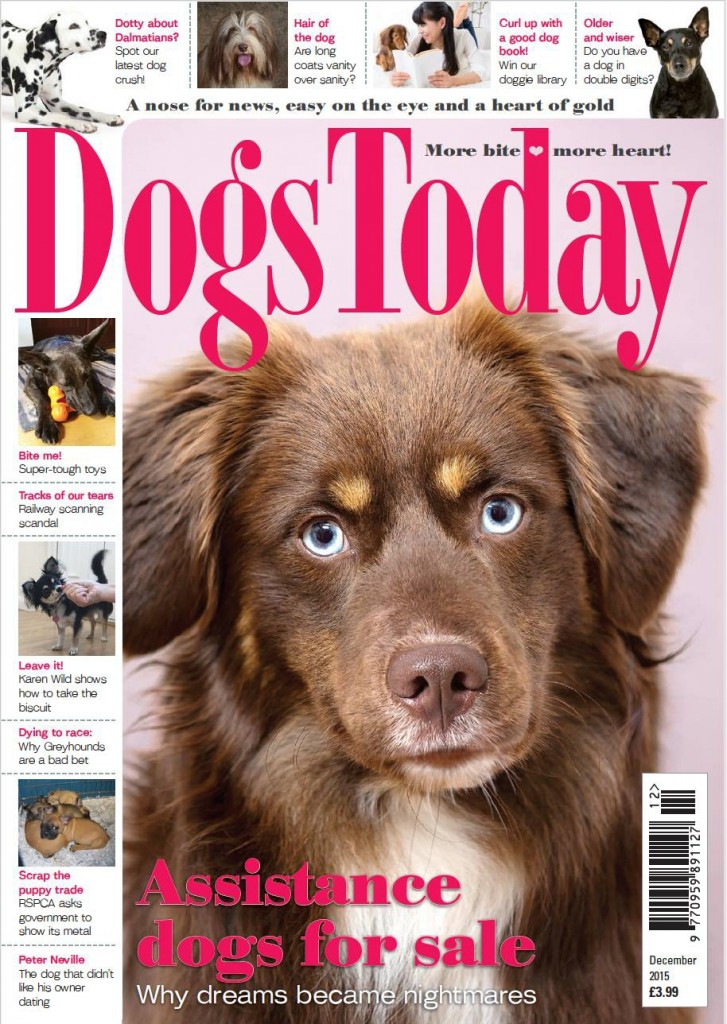 magazine front